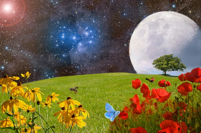 ブラックムーンってどんな月?意味やエネルギーが凄いレアな日だった!