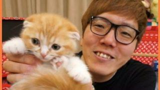 ヒカキンの猫「まるお」の品種って何?値段や耳の特徴まとめ!