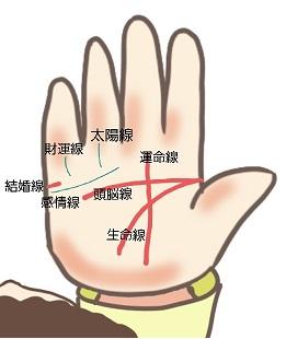 【初心者】手相占いをセルフチェックしよう!基本線の見方を解説!